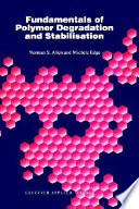 Fundamentals of Polymer Degradation and Stabilization