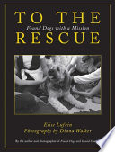 To the Rescue  : Found Dogs with a Mission