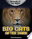 Big Cats After Dark