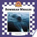Bowhead Whales Book PDF