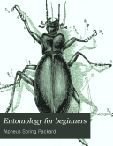 Entomology for Beginners