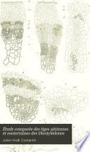 Étude comparée des tiges aériennes et souterraines des Dicotylédones