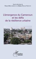 Pdf L'émergence du Cameroun et les défis de la résilience urbaine Telecharger