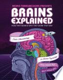 Brains Explained