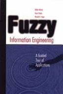 Fuzzy Information Engineering