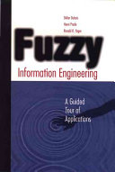 Fuzzy Information Engineering