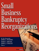 Small Business Bankruptcy Reorganizations