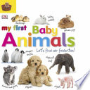 Tabbed Board Books  My First Baby Animals