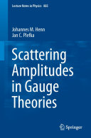 Scattering Amplitudes in Gauge Theories