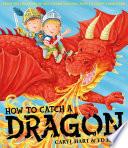 How To Catch A Dragon PDF