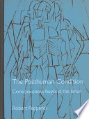 The Posthuman Condition Pdf/ePub eBook
