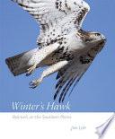 Winter's Hawk