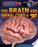 The Brain and Spinal Cord in 3D Book