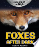 Foxes After Dark