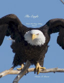 The Eagle Pdf/ePub eBook