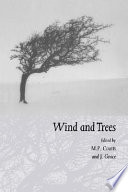 Wind and Trees