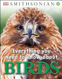 Pdf Everything You Need to Know About Birds