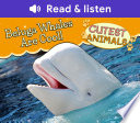 Beluga Whales Are Cool!