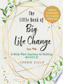 The Little Book of Big Life Change
