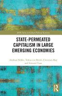 State-permeated Capitalism in Large Emerging Economies Pdf/ePub eBook