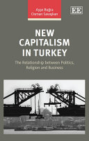 New Capitalism in Turkey Pdf/ePub eBook