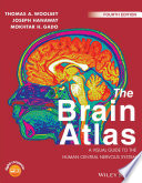 The Brain Atlas