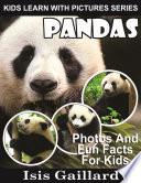 Pandas  Photos and Fun Facts for Kids
