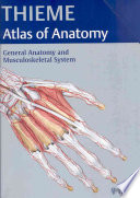 Thieme Atlas of Anatomy
