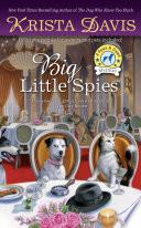 Big Little Spies Book