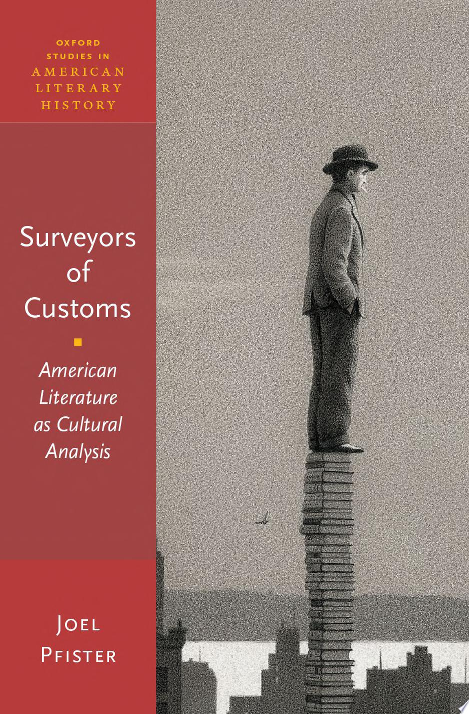 Surveyors of customs  American literature as cultural analysis
