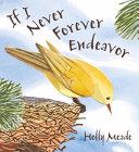 If I Never Forever Endeavor