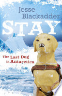 Stay  The Last Dog In Antarctica Book