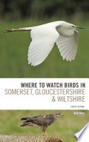 Where To Watch Birds in Somerset  Gloucestershire and Wiltshire