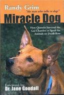 Pdf Miracle Dog