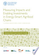 Measuring Impacts and Enabling Investments in Energy-Smart Agrifood Chains