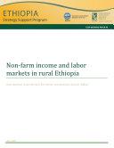 Non farm income and labor markets in rural Ethiopia