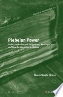 Plebeian Power