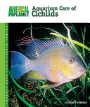Aquarium Care of Cichlids