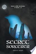 Secret Sorcerer Book PDF