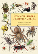 Pdf Common Spiders of North America