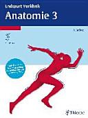 Endspurt Vorklinik: Anatomie 3