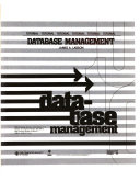 Tutorial  database Management