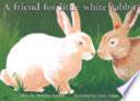 A Friend For Little White Rabbit