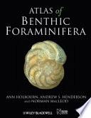 Atlas Of Benthic Foraminifera