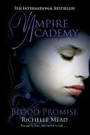 Vampire Academy ebook