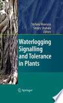 Waterlogging Signalling and Tolerance in Plants