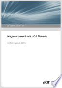 Magnetoconvection in HCLL Blankets