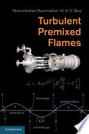Turbulent Premixed Flames