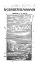 Seite 89