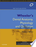 Wheeler s Dental Anatomy  Physiology and Occlusion  1st SAE   E book